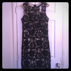 NY&Co Lace Overlay Sheath Dress